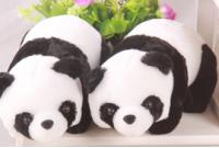 爬行熊貓 - 大熊貓館