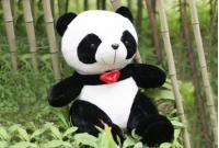 愛心熊貓 - 大熊貓館