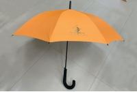直柄傘 - 金龍酒店