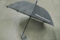 直柄傘 - 廉政公署