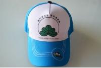 CAP帽 - 清潔運動